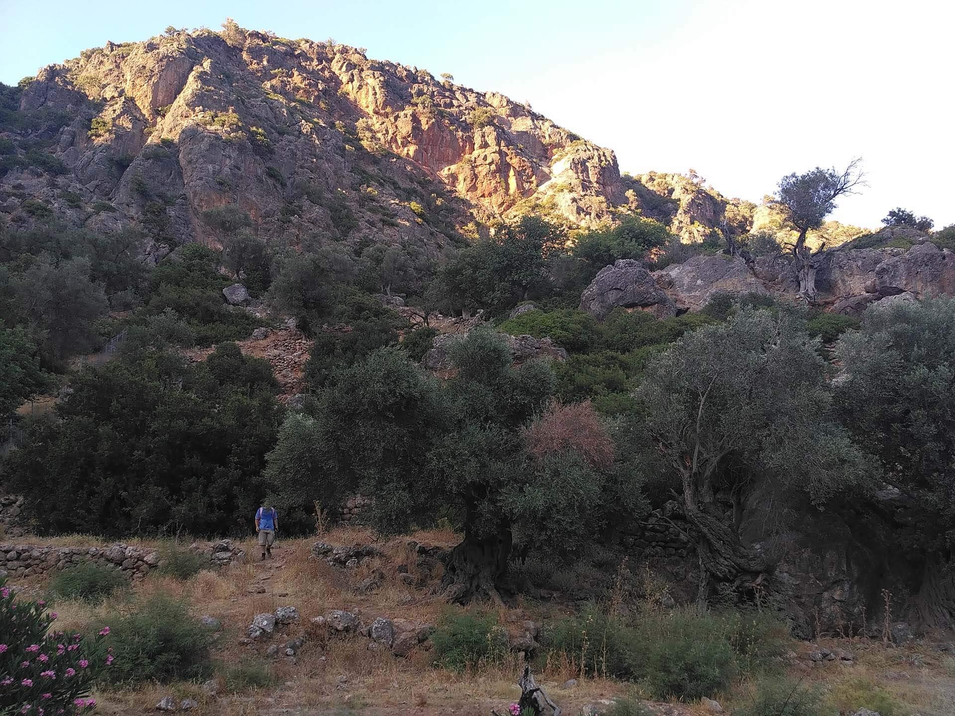 ancient lissos trekking path